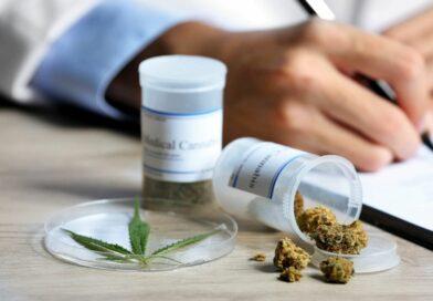 Ya tiene fecha: ¿cuándo se presenta en la Cámara de Diputados el proyecto de cannabis medicinal?